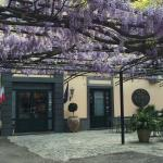 Fragrant wisteria arbor in front of the hotel