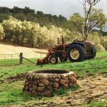 Landscape - Bluehills Farmstay Photo