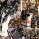 Spirited horses