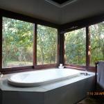 Foto de Jacana Lodge