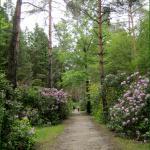 Jeli Arboretum