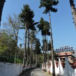 Traveller's Paradise Naukuchiyatal