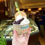 dark chocolate and hazelnut gelato in a medium size cup!