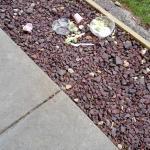 Trash outside