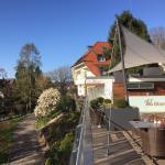 .....Frühlings-Tag auf der Dach-Terrasse!