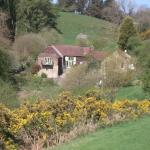 View from footpath towards cottages