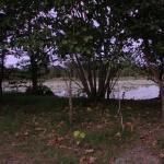 Cattana Wetlands Foto
