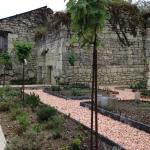The new herb garden