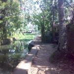 Landscape - Malayalam Lake Resort Homestay Photo