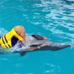 Melka Excelsior Dolphin & Wildlife Resort Foto