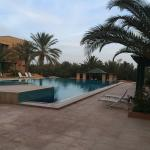 Part of garden & swimming pool