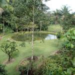 Jardin des Orpailleurs