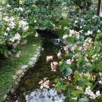 Little stream through the grounds
