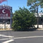 Barer og klubber