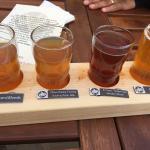 Tecumseh Brewing Company