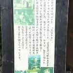 Tokkoobasan No Mise Chiran Chaya