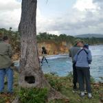Viewing White-tailed Tropicbirds at Hector's River