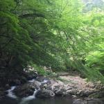 photo5.jpg
