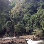 Foto de Spicers Tamarind Retreat