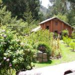 Beautiful gardens surrounding the cabins