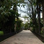Parque Botanico El Majuelo
