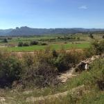 Photo de Camping Terra Alta