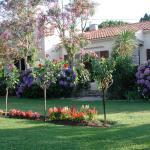 Casa Oleanda Foto