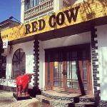 ภาพถ่ายของ Red Cow