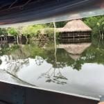 Foto de Amazonia Expeditions' Tahuayo Lodge