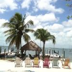 Foto de Key Lime Sailing Club and Cottages