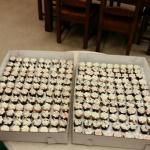 Simply Cupcakes of Warner Robins