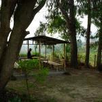 Gamcha Organic Farm & Guest House