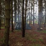 Landscape - Ruberslaw Wild Woods Camping Photo