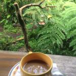 Coffe and hummingbirds!