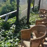 private outdoor patio - the less private side