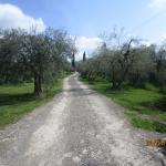 The entrance to Podere Le Vigne