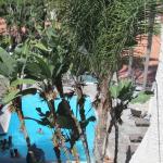 Foto de Catalina Canyon Resort & Spa
