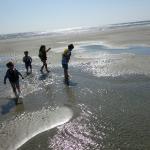Kids Playing on a Sandbar