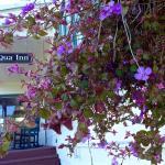 front porch - Requa Inn