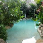 Foto de Genesis Eco-Oasis