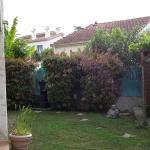 mignon petit jardin très Zen !