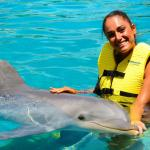 Dolphin interaction at Dolphinaris Cozumel
