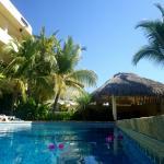 Pool Palapa