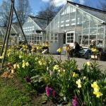 Rosendals Trädgårdskafé om våren foto:Victoria Lagne