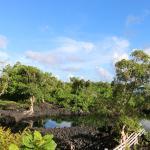 Foto de Bayview Resort