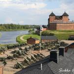 Näkymä ulkonäyttelyalueelle. Kuva: Sirkka Ojala/Museo Militaria.