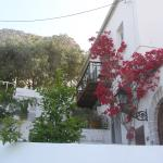 Theassis Guest House Foto