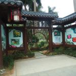 Jin Hua Cha Park - 1