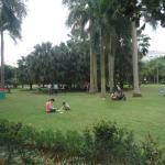 Jinhuacha Park Foto
