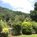 Foto de Kandy Greenview Hotel